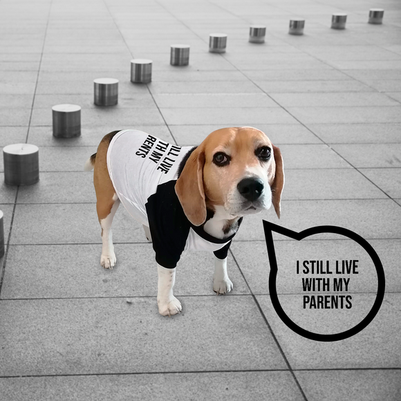 'I still live with my parents' dog shirt