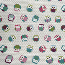 Load image into Gallery viewer, Multi Owls Fabric
