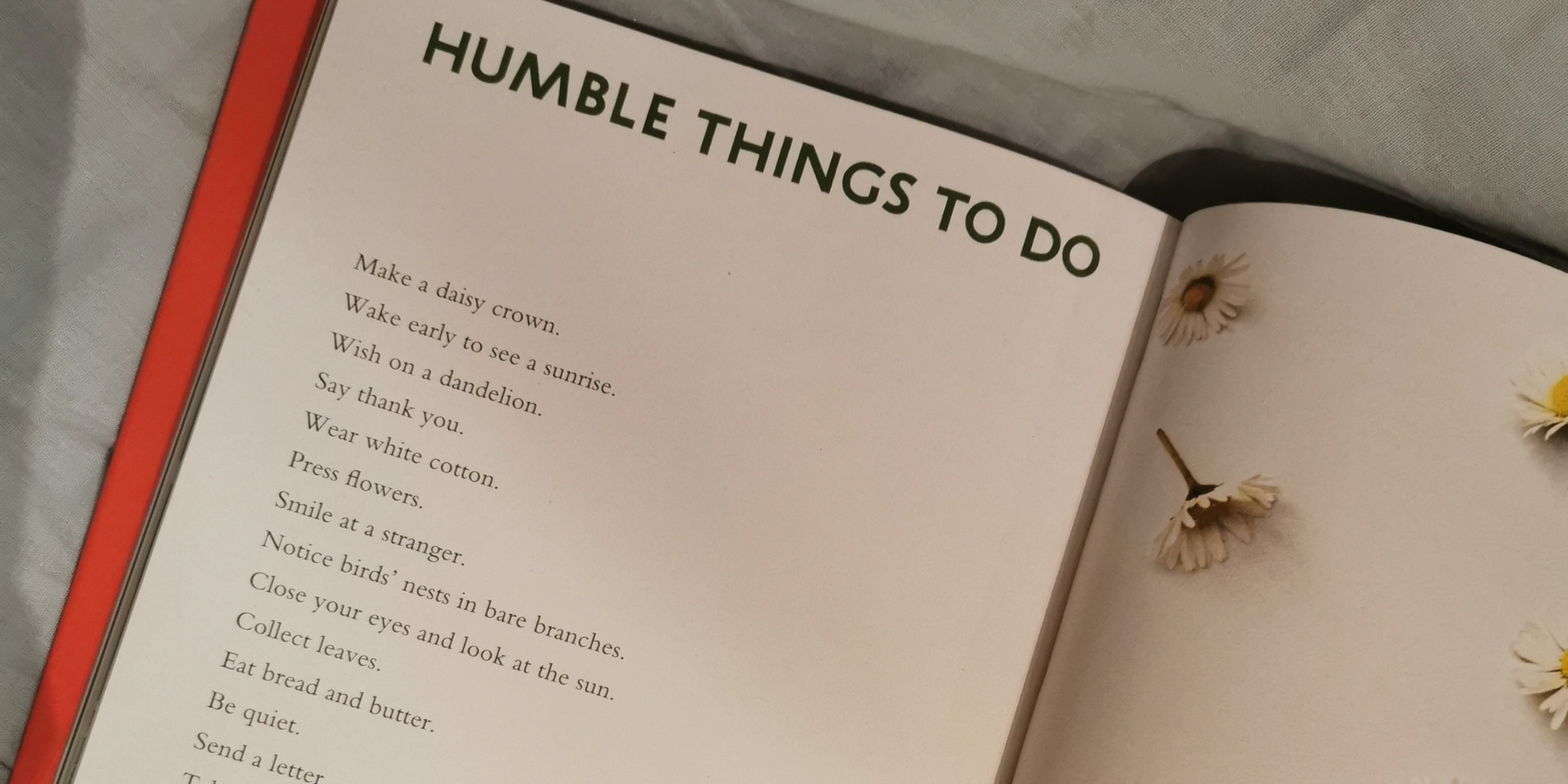 Humble Pleasures photo from Amy's Book