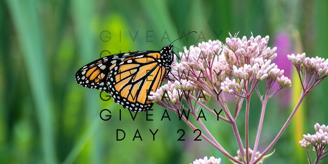 Giveaway day 22
