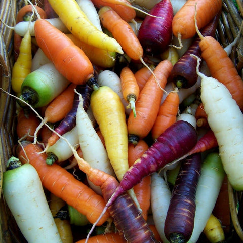 Carrots - Rainbow Mix