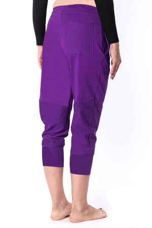 The Woman Panelled Jogger 17 // violet