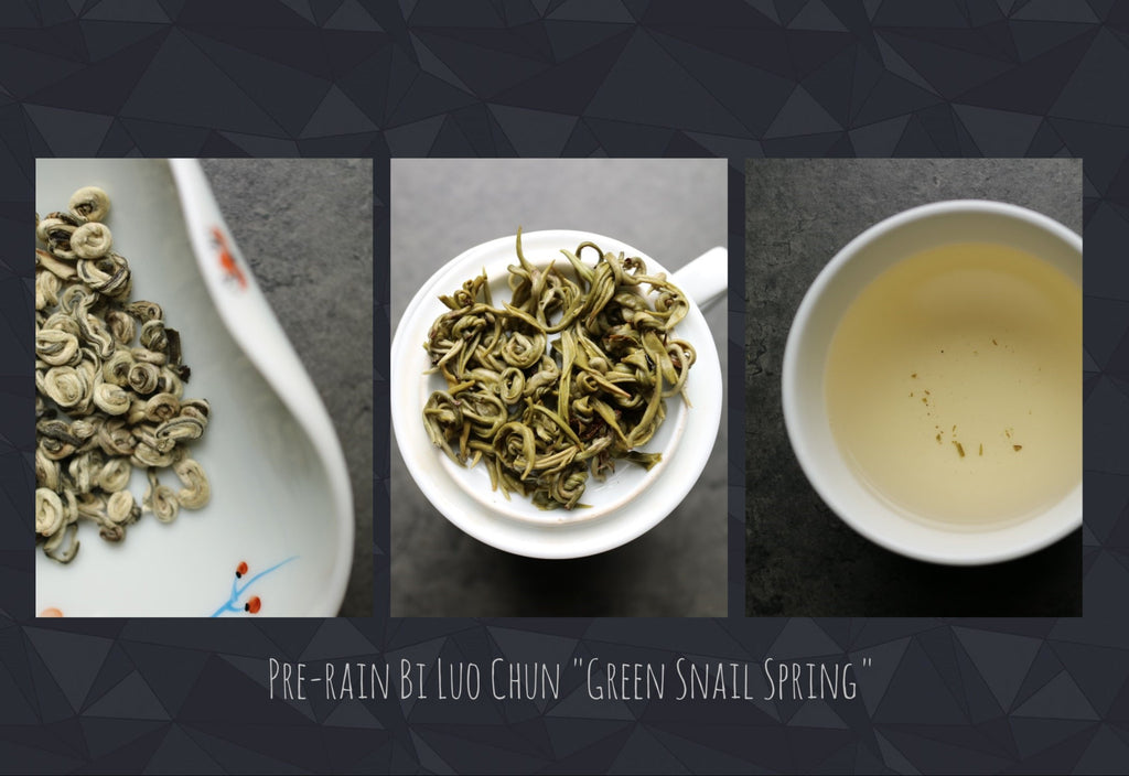 Pre-rain Green Snail Spring Imperial grade - She Fang Boutique Tea
