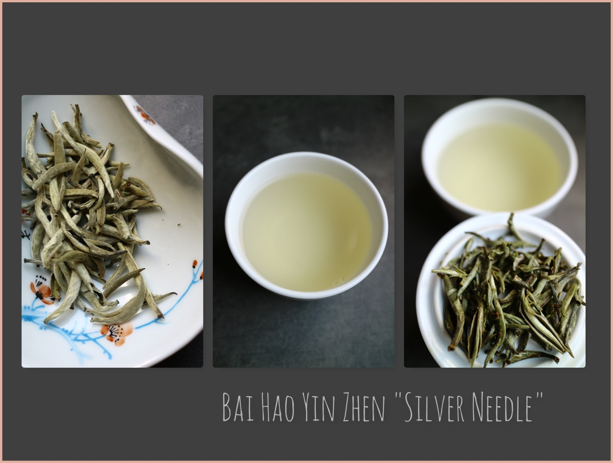 "Tea Sourcing – Bai Hao Yin Zhen ""Silver Needle"" Superior"