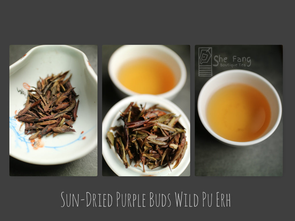 Tea sourcing – batch N.240 Pu Erh Teas – Sun-Dried Purple Buds Wild Pu Erh - She Fang Boutique Tea