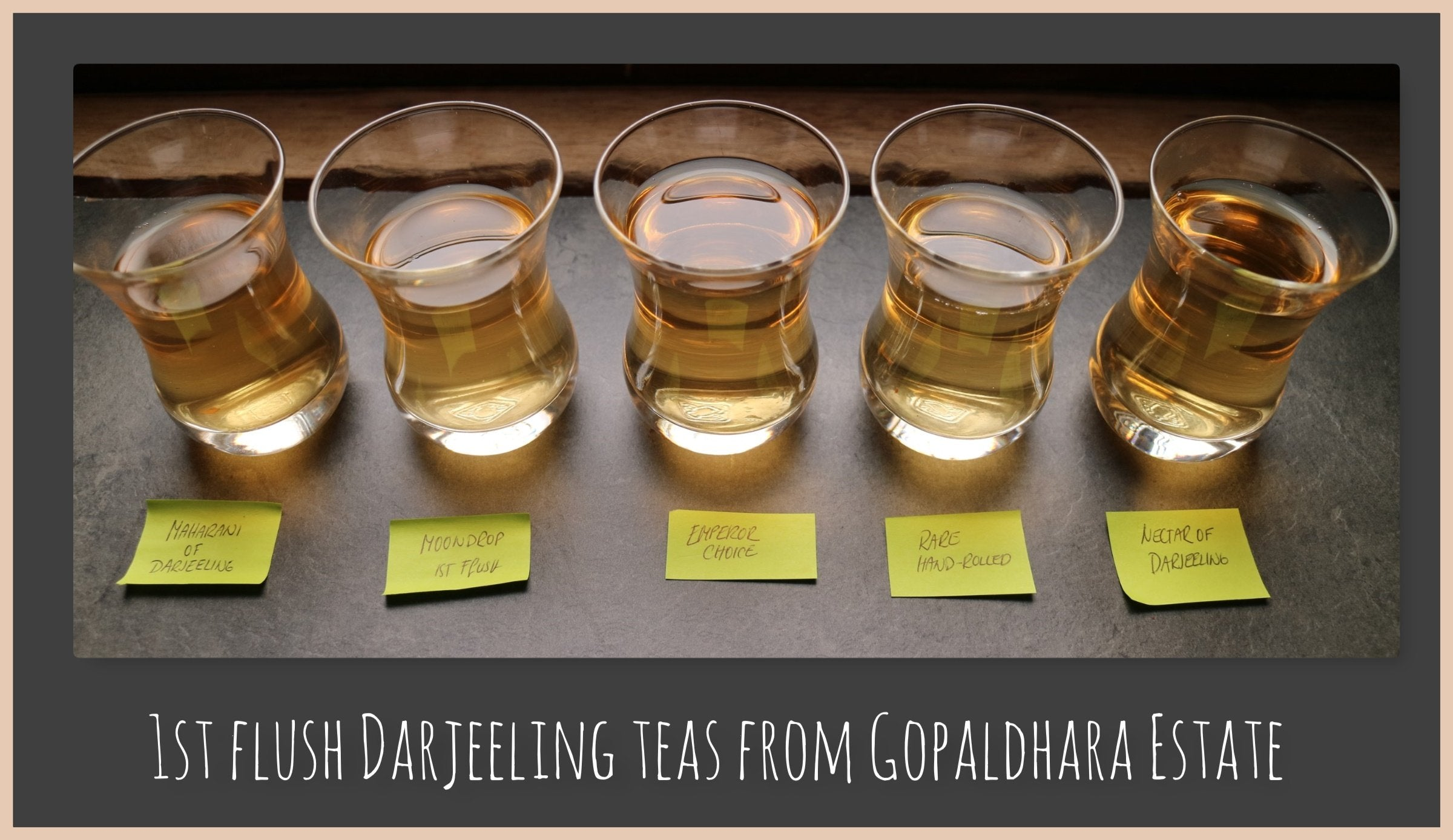1st flush Darjeeling - Mighty Spring TEA