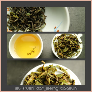 Tea Sourcing - batch 235 - 1st flush Darjeeling Balasun Superior