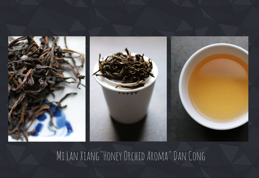 "Mi Lan Xiang ""Honey Orchid Aroma"" Dan Cong - She Fang Boutique Tea"