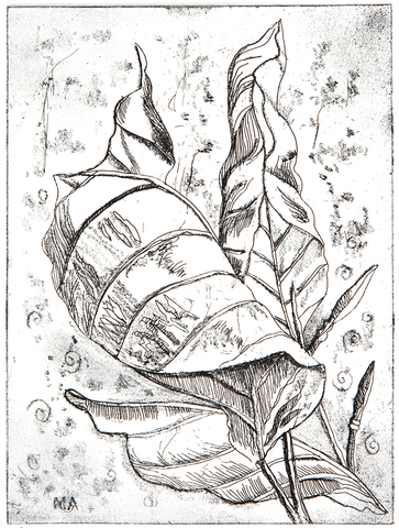 Dry Point – Autumn Leaves