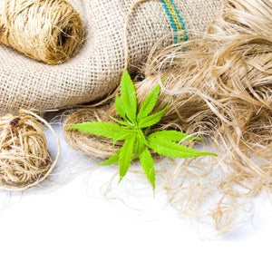 Can Hemp Really Save the World?