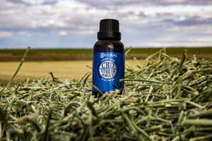 The Benefits of CBD in Aromatherapy