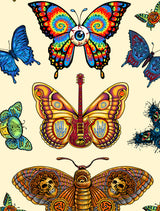 Dead Butterflies Stickers • Signed