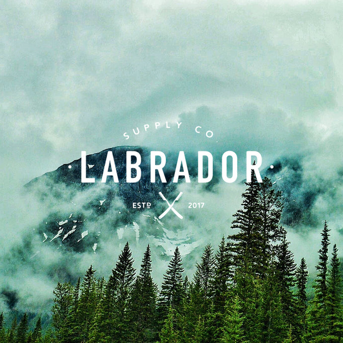 Labrador Supply Co. | Introduction