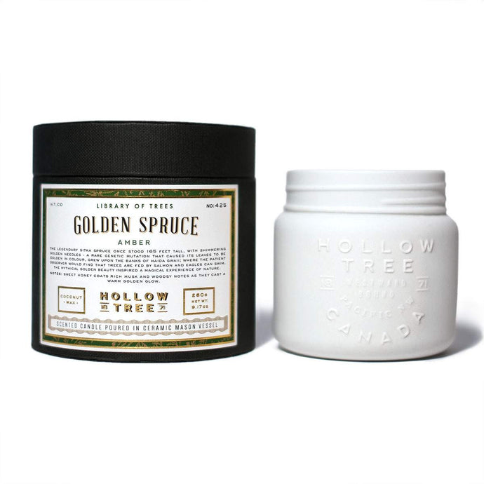 """Golden Spruce"" coconut wax candle from HOLLOW TREE 1871, available at LABRADOR SUPPLY CO."
