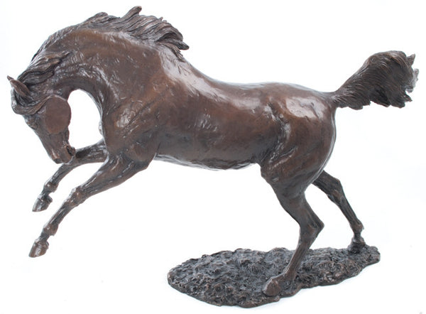 Limited Ed 50 Hot Cast Bronze Sculpture Arab Horse Large David Geenty - bronzebarngallery.com