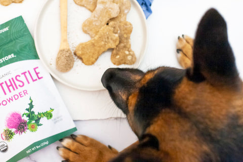 Simple Homemade Peanut Butter Dog Treats