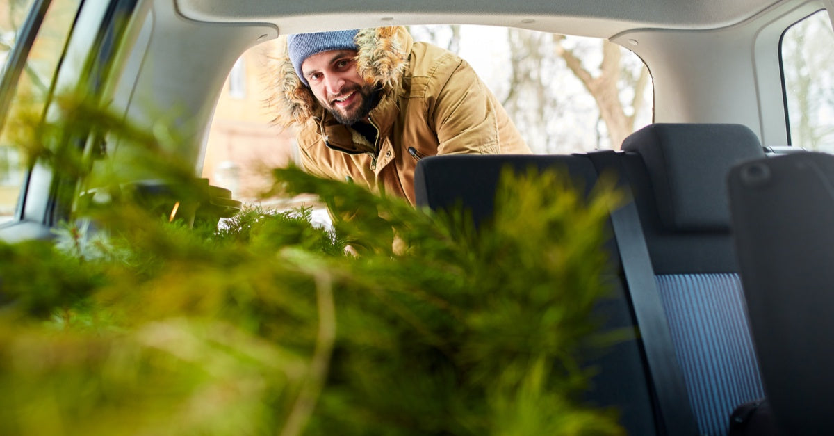 Essential oils for cleaning your car