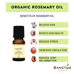 Organic Rosemary 1,8-Cineole