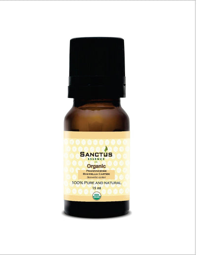 Organic Frankincense Carteri Oil - Sanctus Essence