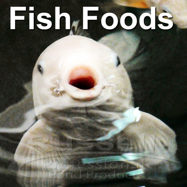 Fish Foods and Treats for Koi, Goldfish, and Pond Fish