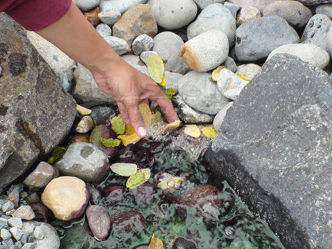 Hand picking leaves from a pondless gravel basin