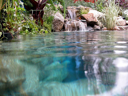 "The truth about ""annually"" cleaned waterfall filters is they are bad for your pond or pondless waterfall"