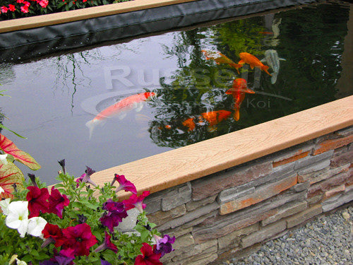 How to build a koi pond easy to follow instructions for How to build a koi pond above ground