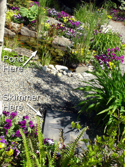 All HydroClean pond skimmers can be installed away from the pond for a more natural looking pond