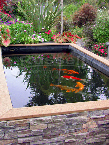 How to build a koi pond easy to follow instructions for Building a koi pond