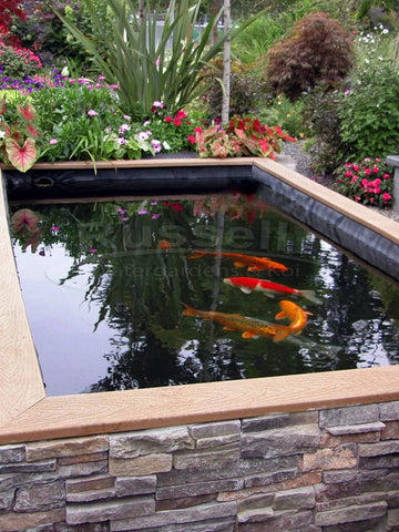 Koi ponds what is a koi pond and how it differs from for Koi pond design pictures