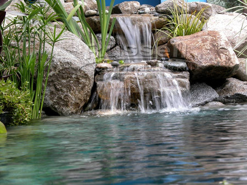 A Hybrid Pond is part water garden pond and part koi pond.