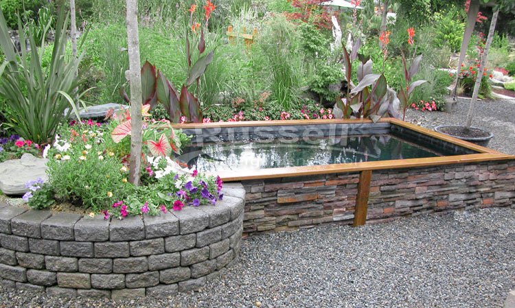 You Learned How To Build A Koi Pond!