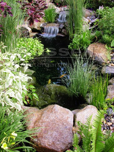 HM-2000 pump is a great choice for water garden ponds