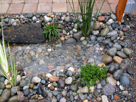 Pondless Basin-Ectomies make owning pondless waterfall less expensive and more of a joy.