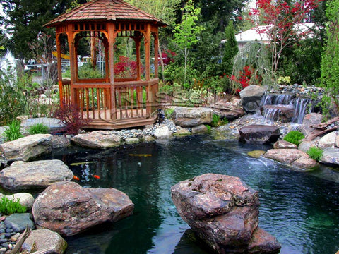 About Us: Russell Watergardens & Koi invented the Crossover Pond concept.