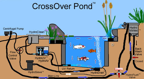 A CrossOver Pond™ is a cross between a Hybrid Pond™ and a Koi Pond