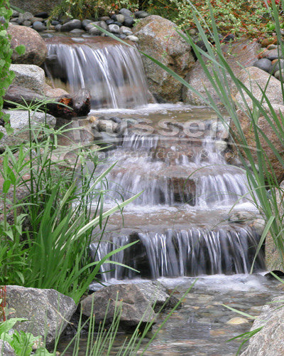 Dolphin Series Ultimate Large Pondless Waterfall with 10' Stream Kit