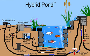 Circular water motion inside the Hybrid Pond makes the bottom drain more efficient.
