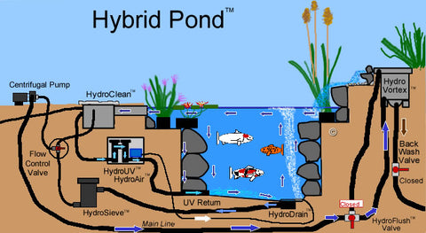 Hybrid Pond™ - A Design Concept Created by Russell Watergardens & Koi.