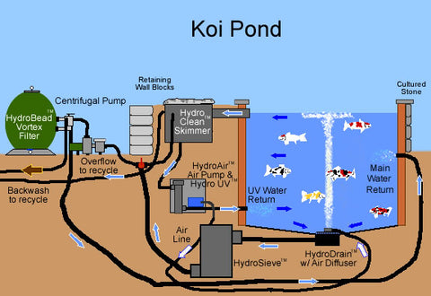 Koi ponds what is a koi pond and how it differs from for Pond filtration system diagram
