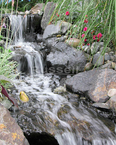 Marlin Series Ultimate medium pondless waterfall with 5' stream kit