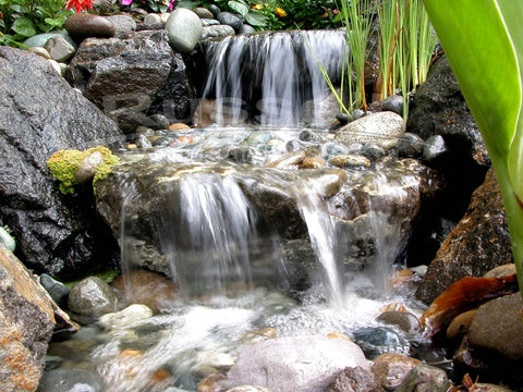 An Ahi Hydro Vortex™ small waterfall filter lets you build beautiful and easy to maintain pondless waterfalls.