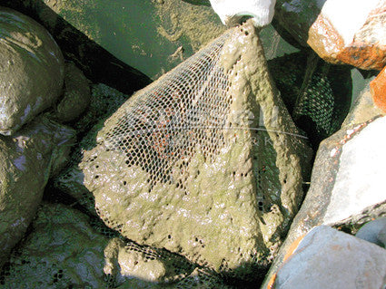 Typical waterfall filters are not backwashable and must be dismantled by hand for cleaning