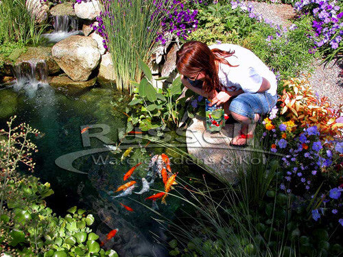Ultimate water garden pond kits