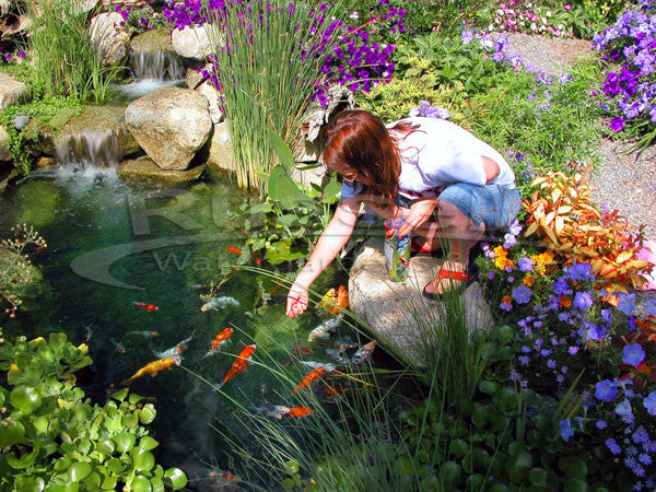 Ultimate small pond kits make beautiful and easy to clean ponds