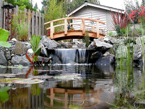 About Us:  Russell Watergardens & Koi has built more ponds and pondless waterfalls.