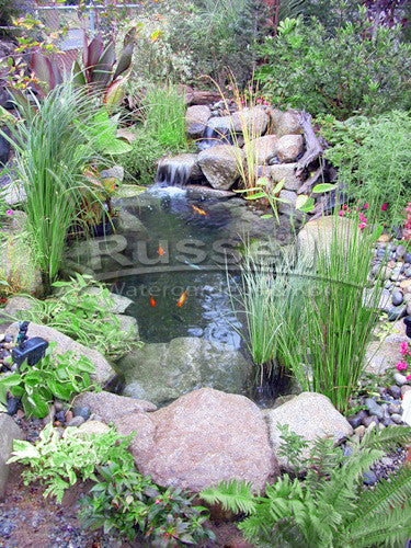 Ultimate small water garden pond kit