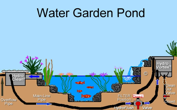 A water garden pond built with a Russell Watergarden's water garden pond kit is easy to clean.