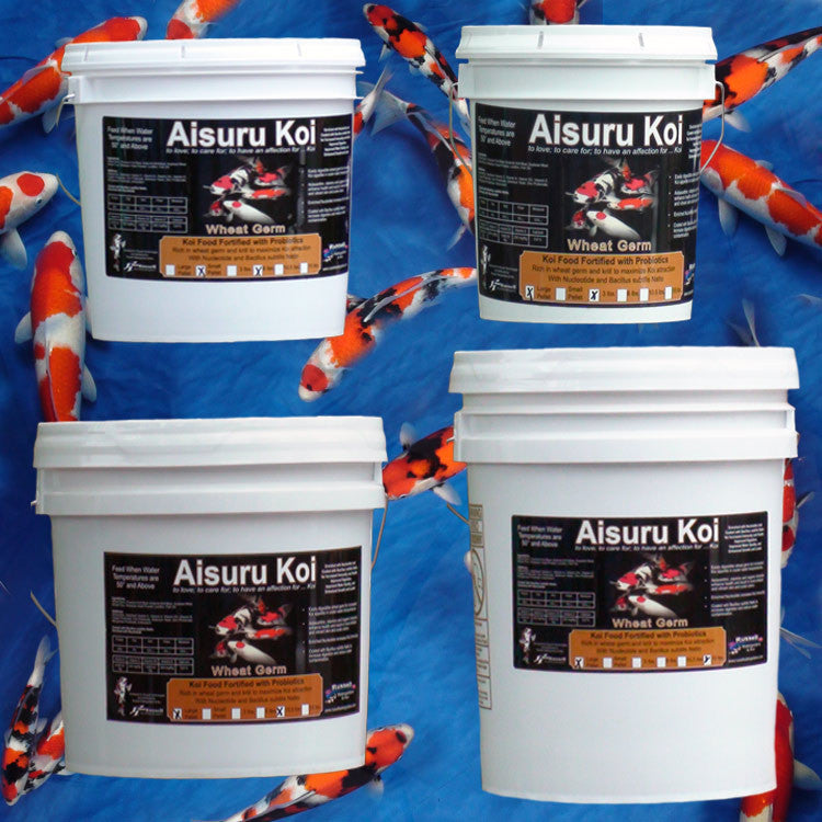 Aisuru Koi™ Wheat Germ Koi Food