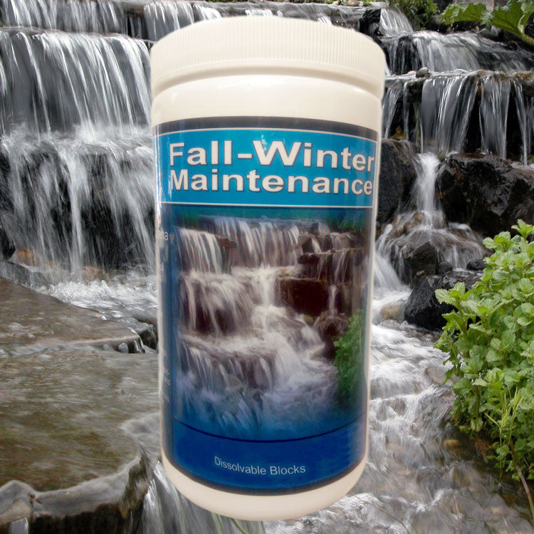Fall Winter Maintenance Cold Water Beneficial Bacteria